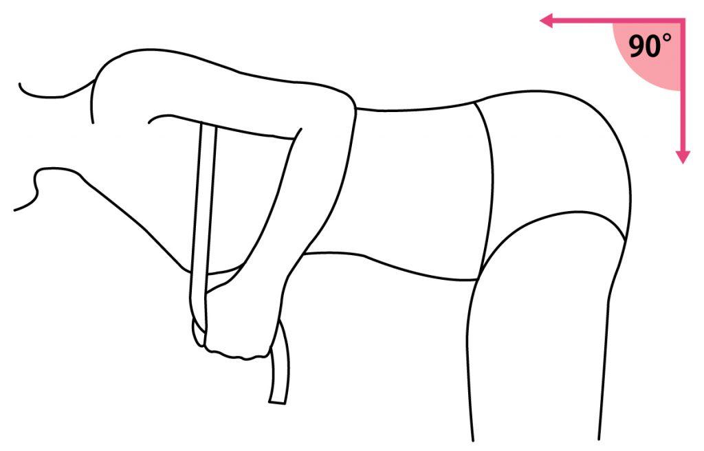 ブラジャーのサイズの測り方