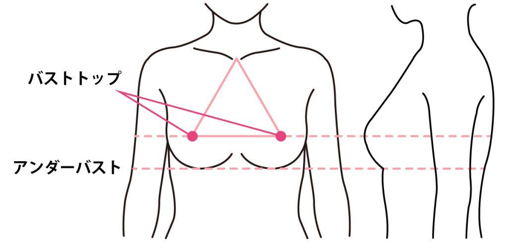 ブラジャーサイズの測るポイント